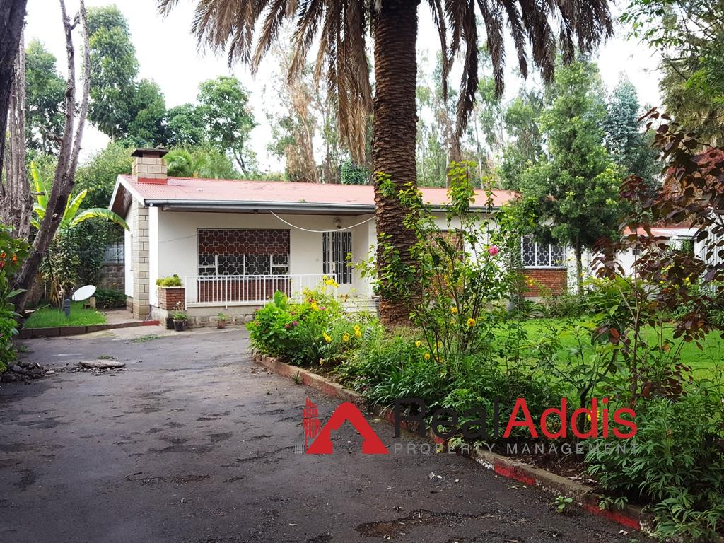 House For Rent – Bisrate Gebriel (Old Airport) Area