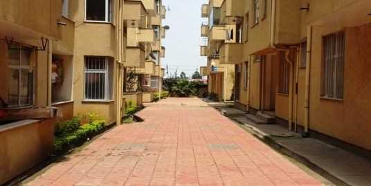 Apartment For Rent – Gerji Area