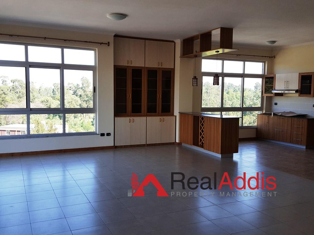 Apartment For Rent – Olympia Area
